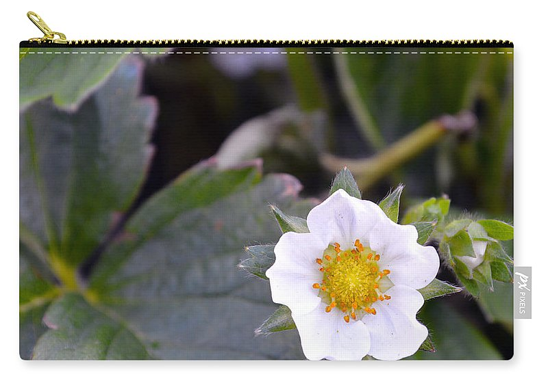 Strawberry Carry-all Pouch featuring the photograph Strawberry Flower by Brent Dolliver