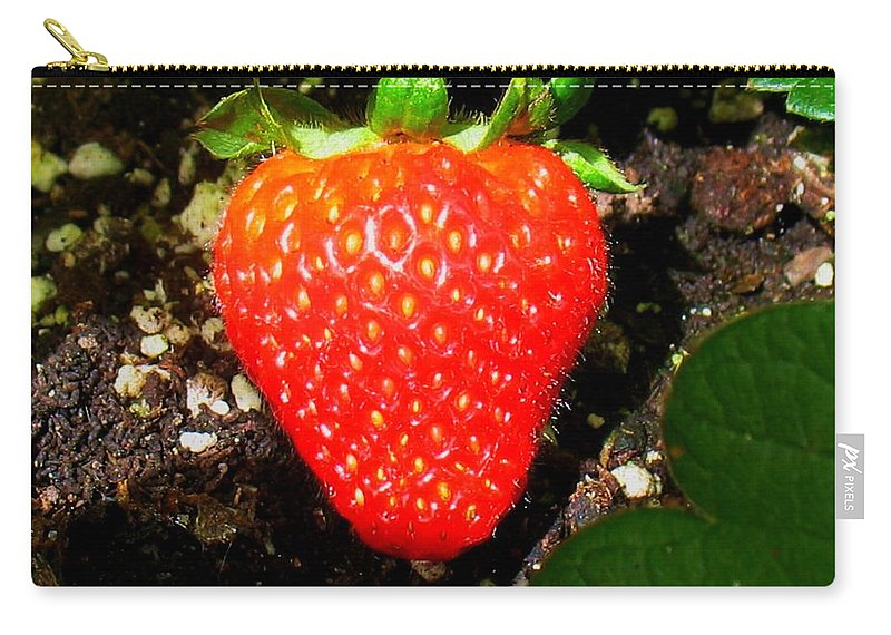 Strawberry Carry-all Pouch featuring the photograph Strawberry by Patti Whitten