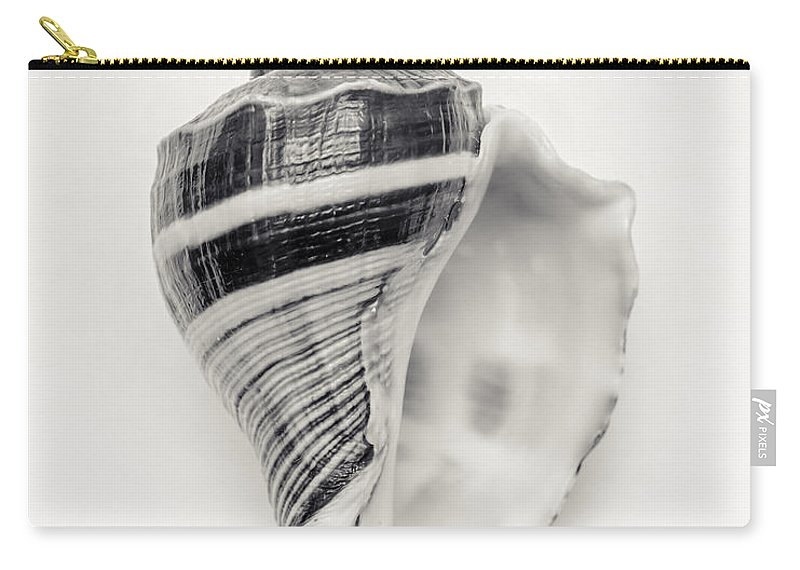 Seashell Photography Carry-all Pouch featuring the photograph Striped Sea Shell by Lucid Mood