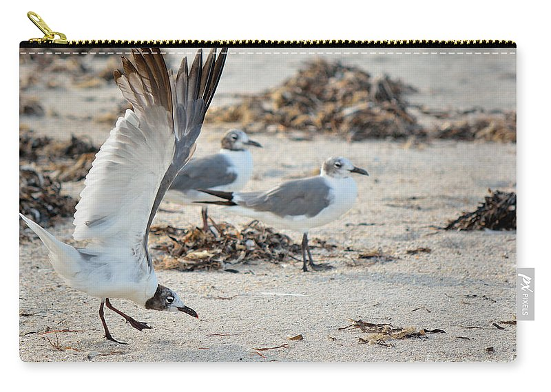 Strutting Carry-all Pouch featuring the photograph Strutting Seagull On The Beach by Patricia Twardzik