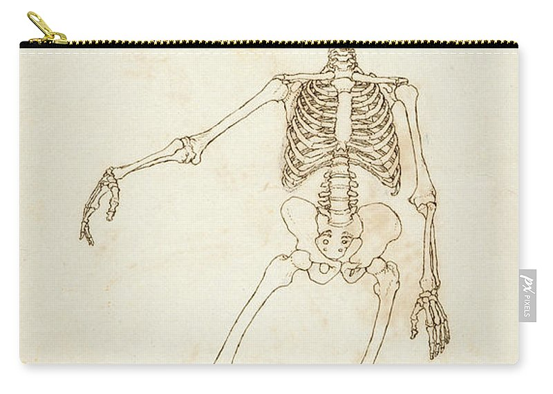 Drawing Carry-all Pouch featuring the photograph Study Of The Human Figure, Anterior View, From A Comparative Anatomical Exposition Of The Structure by George Stubbs