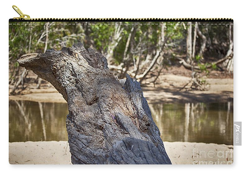 Creek Carry-all Pouch featuring the photograph Stumped V4 by Douglas Barnard