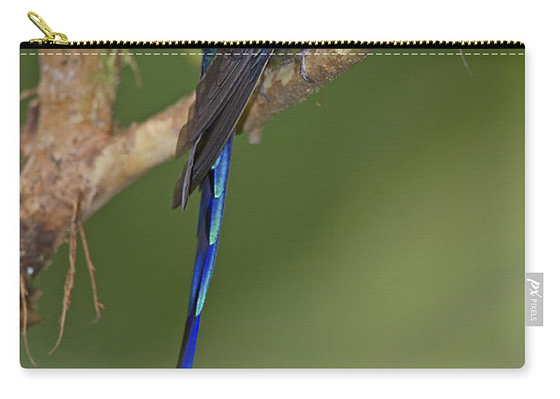 Festblues Carry-all Pouch featuring the photograph Stylish Hummer... by Nina Stavlund