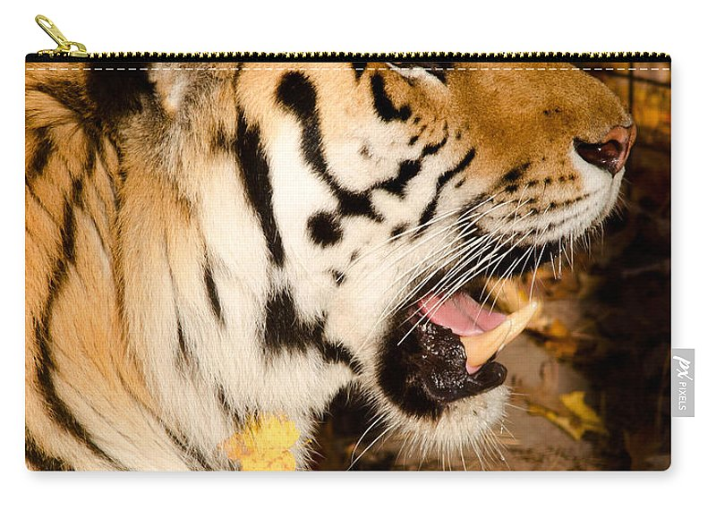 Sumatran Carry-all Pouch featuring the photograph Sumatran Tiger by Les Palenik