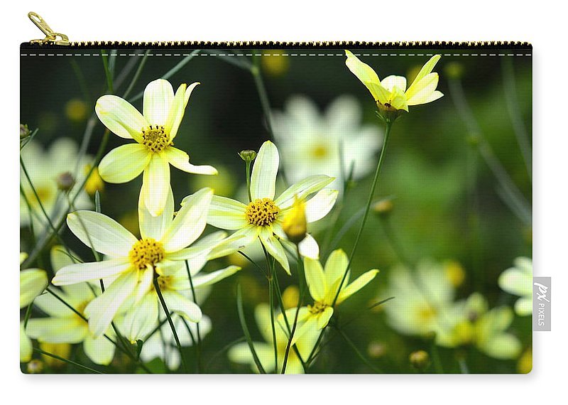 Dainty Carry-all Pouch featuring the photograph Summer Flowers by Corinne Rhode