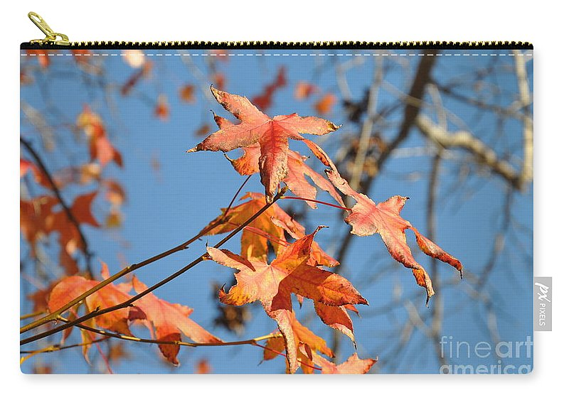Summer Carry-all Pouch featuring the photograph Summer Gold Leaf by Gandz Photography