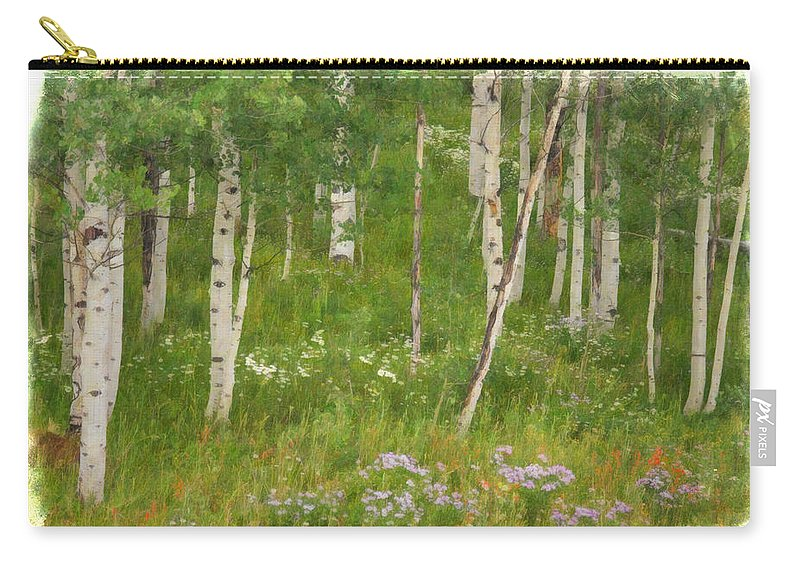 Aspen Grove Carry-all Pouch featuring the photograph Summer In The Colorado Mountains by Priscilla Burgers