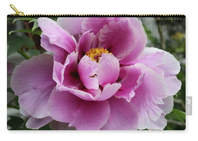Flower Carry-all Pouch featuring the photograph Summer Pink by Barbara McMahon