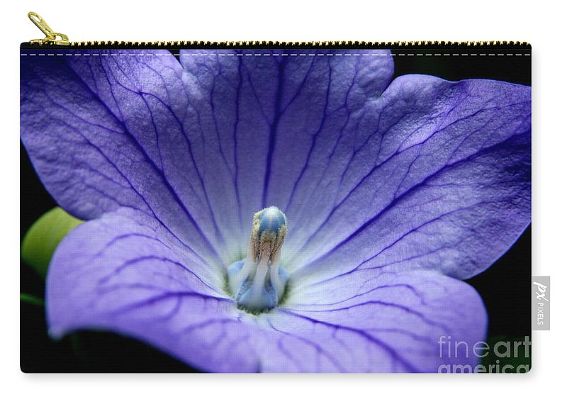 Blue Flower Carry-all Pouch featuring the photograph Floral Summer Sensation by Neal Eslinger