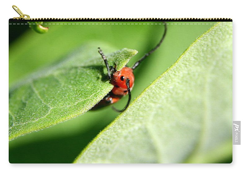 Insect Carry-all Pouch featuring the photograph Summer Snack by Neal Eslinger