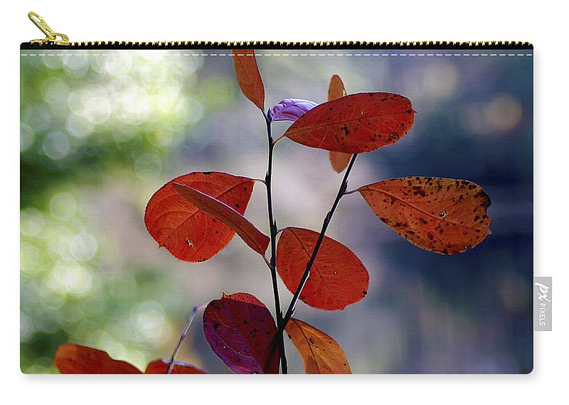 2d Carry-all Pouch featuring the photograph Summer's End by Brian Wallace