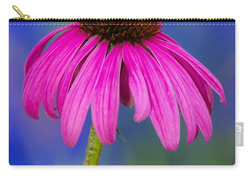 Flower Carry-all Pouch featuring the photograph Summer's Palette by Penny Meyers