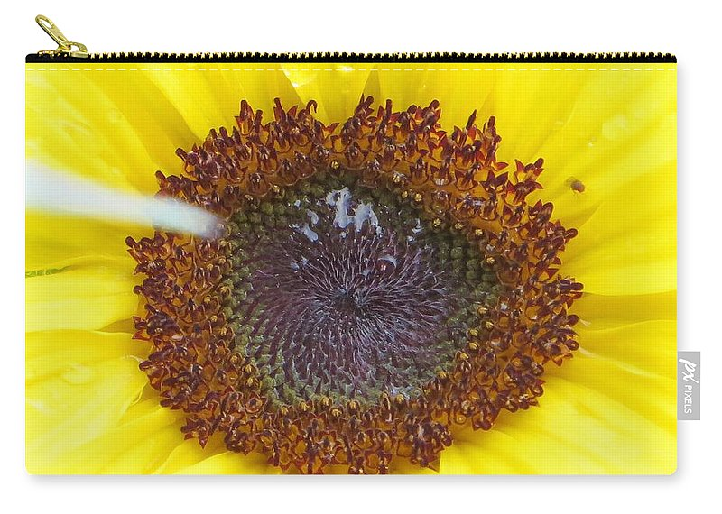 Amazing Flower Carry-all Pouch featuring the photograph Sun Dial by Sonali Gangane