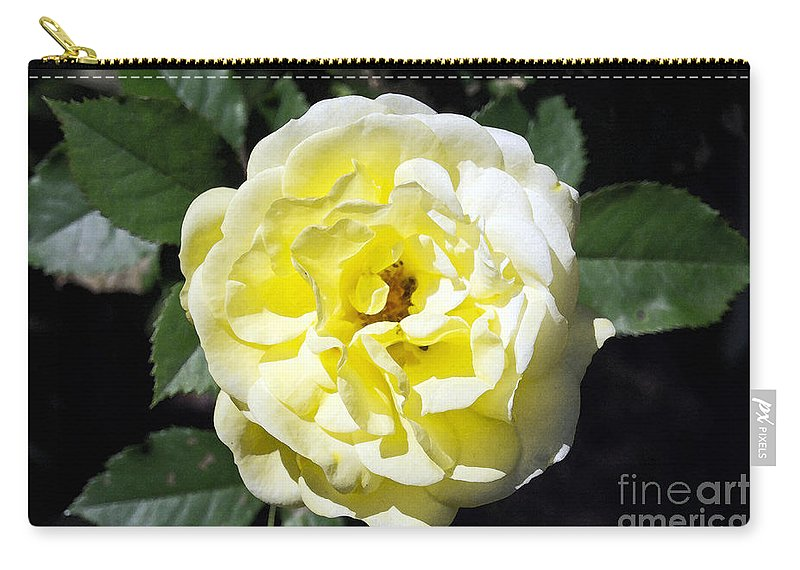 Rose Carry-all Pouch featuring the photograph Sun Goddess by Joe Geraci