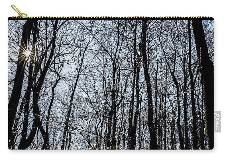 Sunset Carry-all Pouch featuring the photograph Sun Lit Frozen Rain 2 by Anthony Hughes