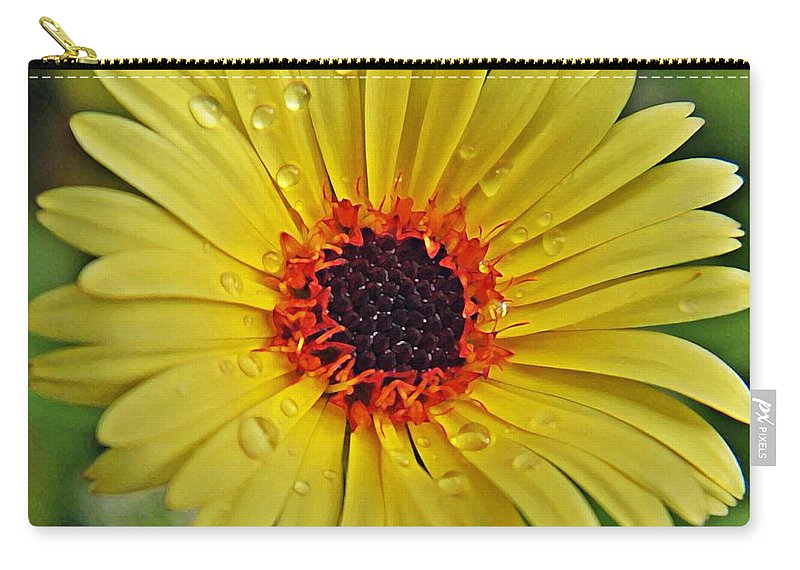 Carry-all Pouch featuring the photograph Sun On A Rainy Day by Chris Berry