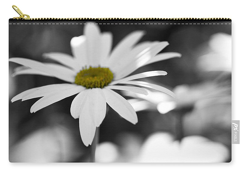 Daisy Carry-all Pouch featuring the photograph Sun-speckled Daisy by Don Schwartz