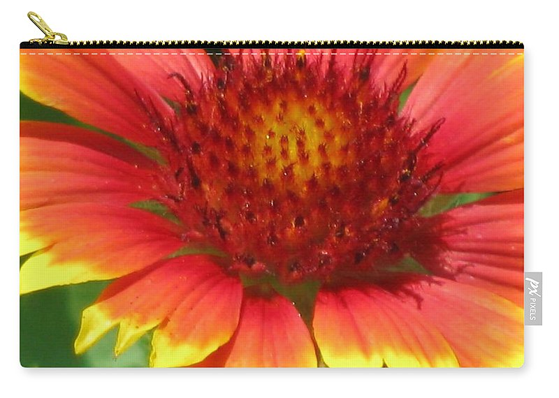Flower Carry-all Pouch featuring the photograph Sunburst 05 by Pamela Critchlow
