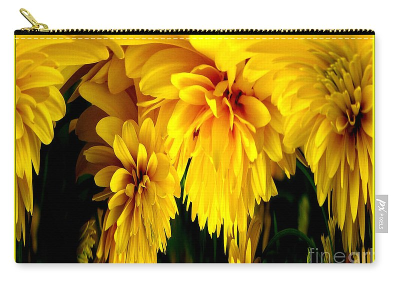 Sunflower Carry-all Pouch featuring the photograph Sunflower Abstract 1 by Rose Santuci-Sofranko