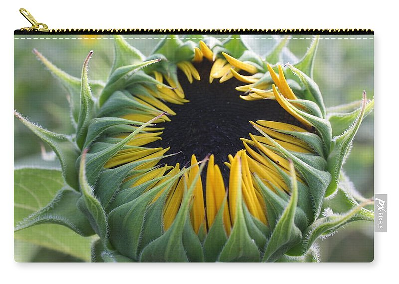 Sunflower Carry-all Pouch featuring the photograph Blooming Sunflower by Dora Sofia Caputo Photographic Design and Fine Art