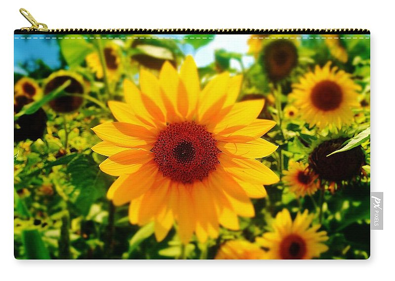 Sunflower Carry-all Pouch featuring the photograph Sunflower Centered by Daniel Thompson