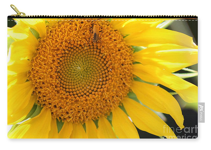Nature Carry-all Pouch featuring the photograph Sunflower by Karen Adams