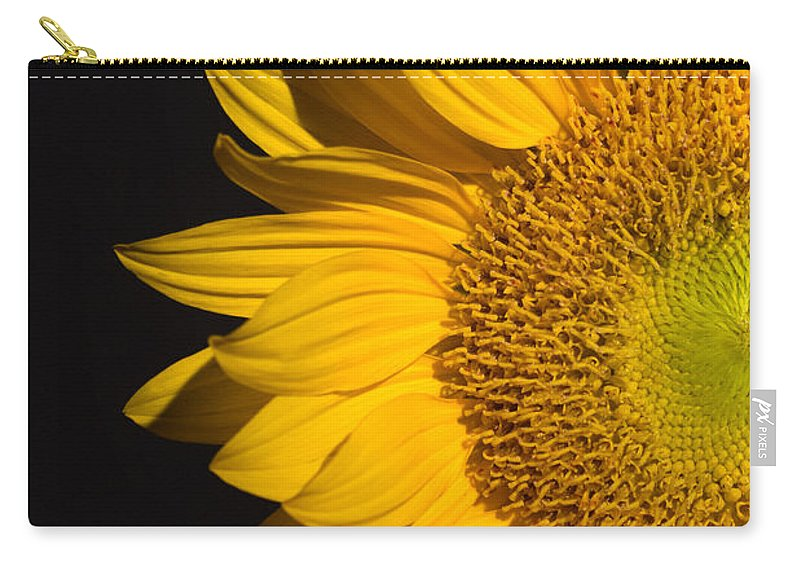 Sunflowers Carry-all Pouch featuring the photograph Sunflower by Mark Ashkenazi