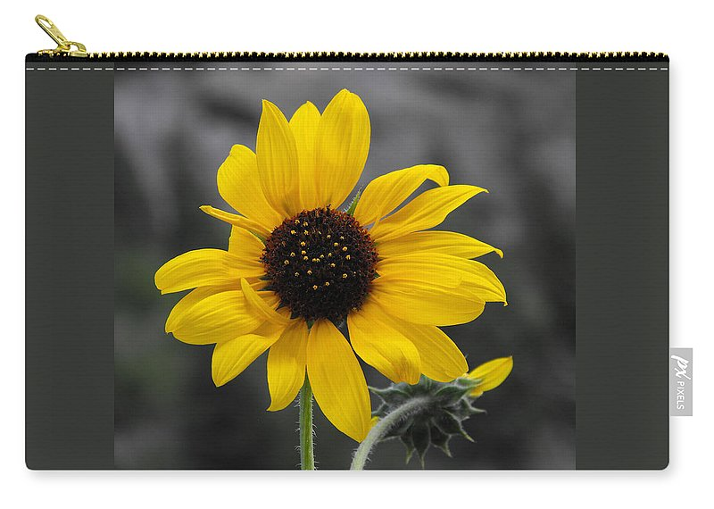 Sunflower Carry-all Pouch featuring the photograph Sunflower On Gray by Rebecca Margraf