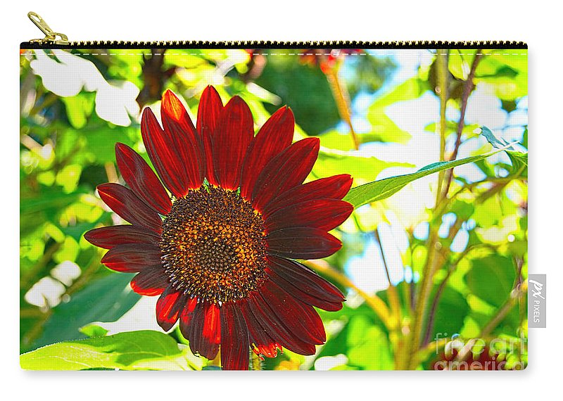 Quincy Illinois Carry-all Pouch featuring the photograph Sunflower - Red Blazer - Luther Fine Art by Luther Fine Art