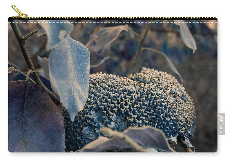 Sunflower Carry-all Pouch featuring the photograph Sunflower Seeds and Apple Leaves by Jo Smoley
