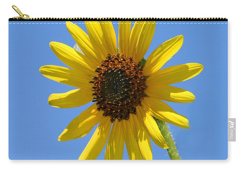 Carry-all Pouch featuring the photograph Sunflower Square by Karen Adams