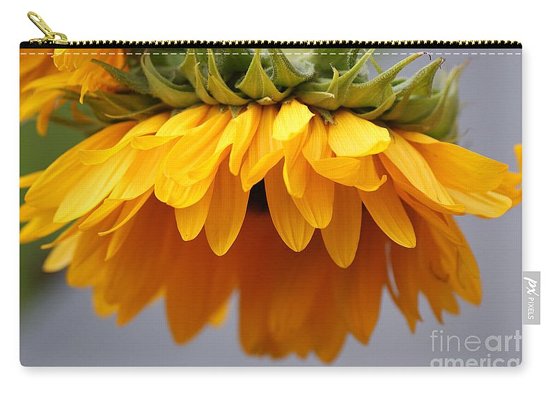 Sunflowers Carry-all Pouch featuring the photograph Sunflowers 6 by Carol Lynch
