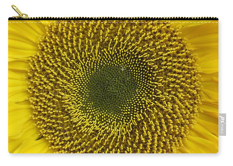 Daisy Carry-all Pouch featuring the photograph Sunflower's Cluster by Rosita Larsson