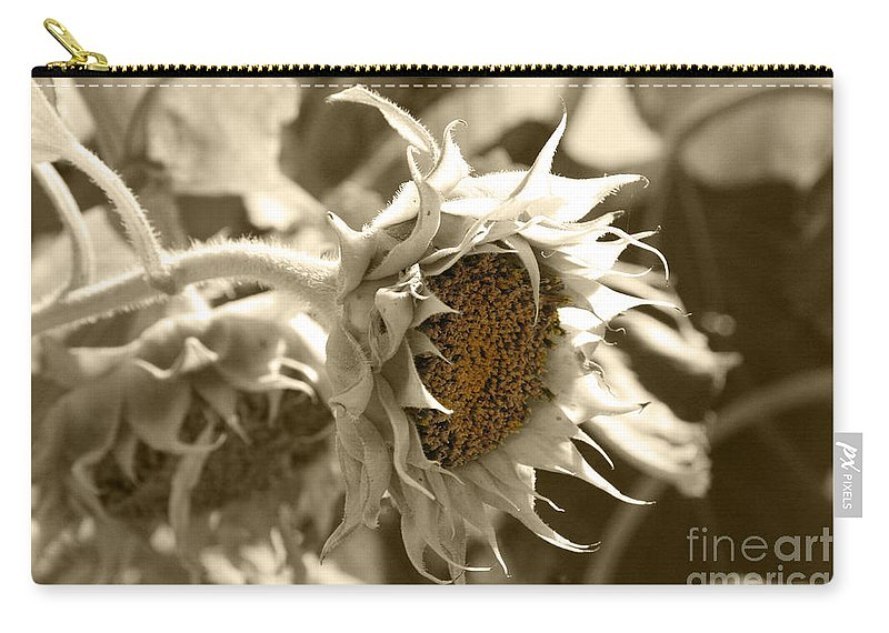 Sunflower Carry-all Pouch featuring the photograph Sunflowers by Lali Kacharava