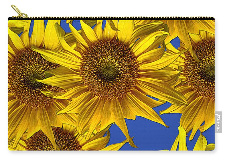Sunflowers Carry-all Pouch featuring the photograph Sunny Gets Blue by John Haldane