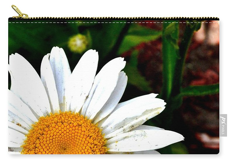 Daisy Carry-all Pouch featuring the photograph Sunny Side Up by Susie Loechler