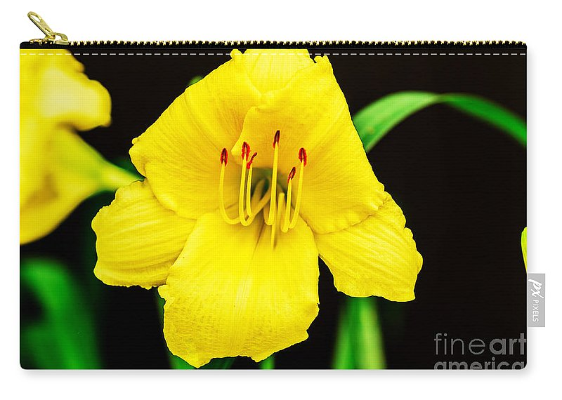 Yellow Carry-all Pouch featuring the photograph Sunrise by Elvis Vaughn