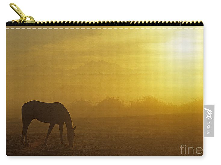 Natural World Carry-all Pouch featuring the photograph Sunrise Horse In Field by Jim Corwin
