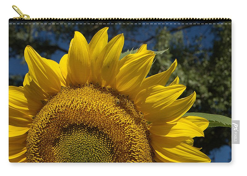 Sunflower Carry-all Pouch featuring the photograph Sunrise Sunflower by Jerry McElroy