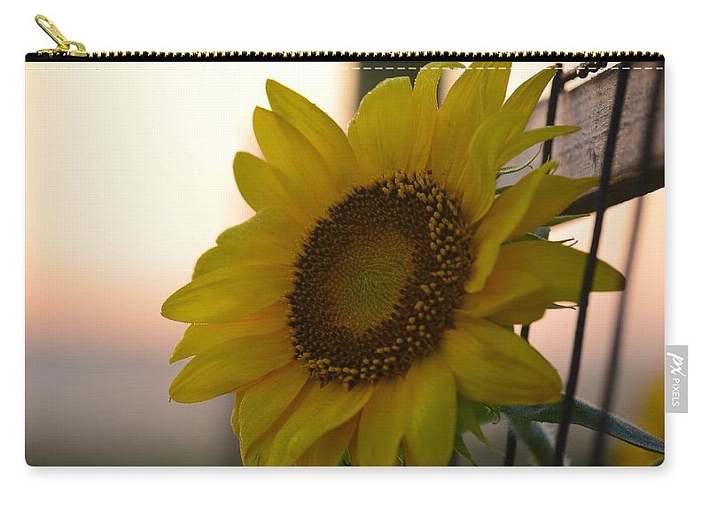 Sunrise Sunflower Carry-all Pouch featuring the photograph Sunrise Sunflower by Maria Urso