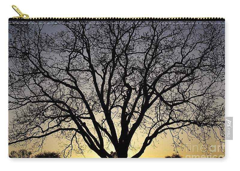 Sunset Carry-all Pouch featuring the photograph Sunset Tree by Gary Richards