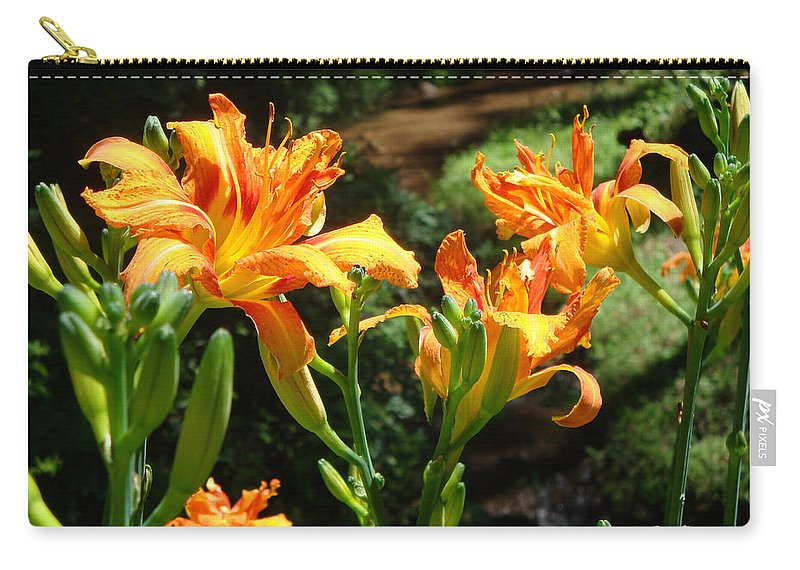 Daylily Carry-all Pouch featuring the photograph Sunshine by Jean Blackmer