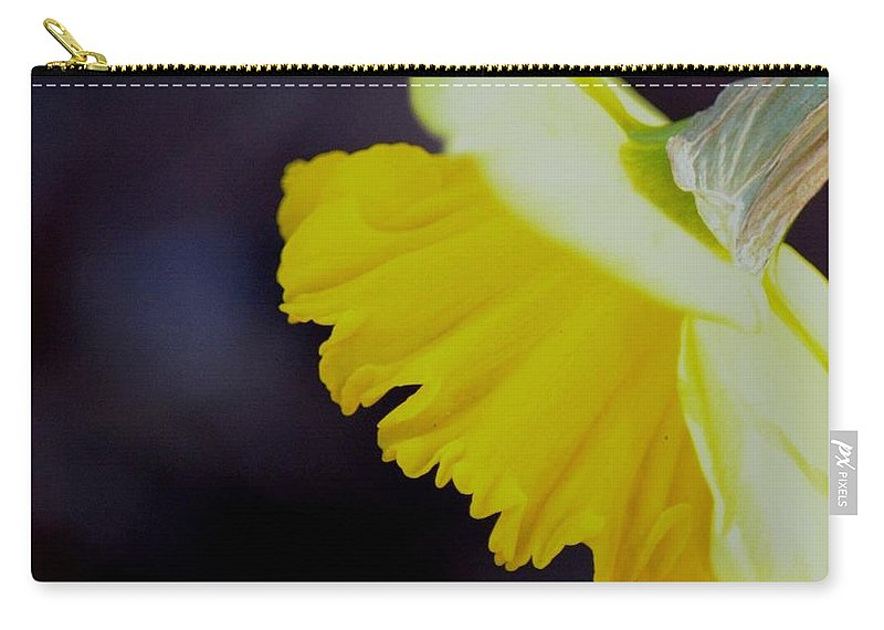 Sunshine Yellow Daffodil Carry-all Pouch featuring the photograph Sunshine Yellow Daffodil by Maria Urso