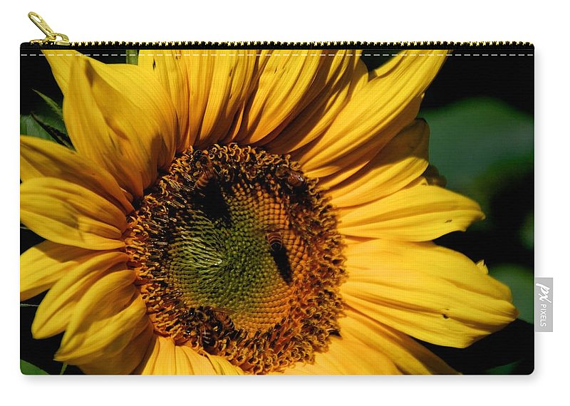 Sunflower Carry-all Pouch featuring the photograph Sunshine's Blessing by Eric Tressler