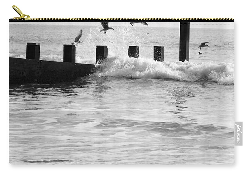 Autumn Carry-all Pouch featuring the photograph Surprised Seagulls by Anne Gilbert