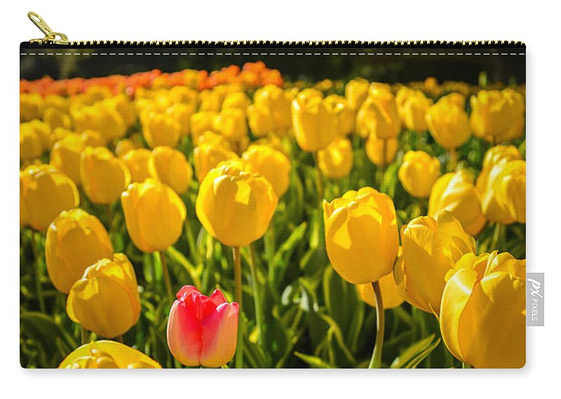 Pennsylvania Carry-all Pouch featuring the photograph Surrounded by Kristopher Schoenleber