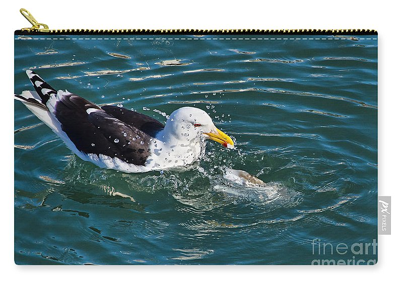 Bird Carry-all Pouch featuring the photograph Sushi For Breakfast by Susie Peek