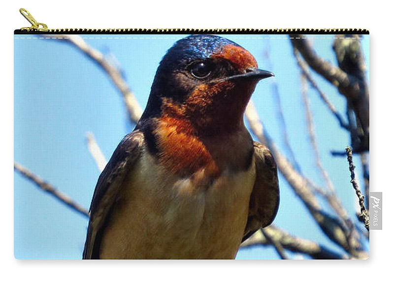 Nature Carry-all Pouch featuring the photograph Swallow Glance by Art Dingo