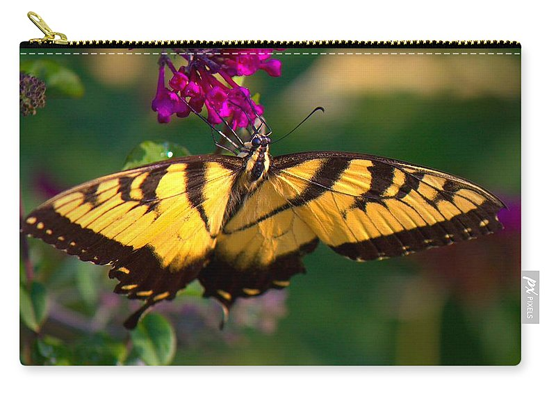 Butterfly Carry-all Pouch featuring the photograph Swallowtail 1 by John Feiser