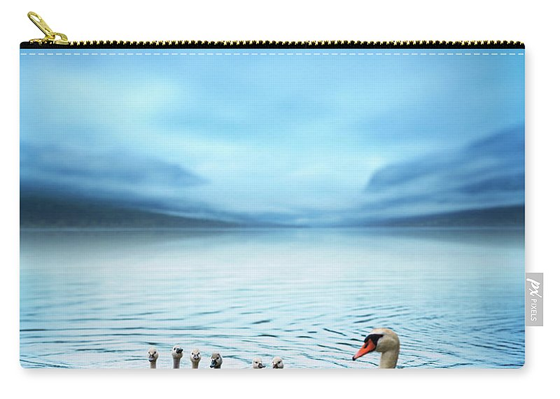 Scenics Carry-all Pouch featuring the photograph Swan Family On The Lake by Borchee